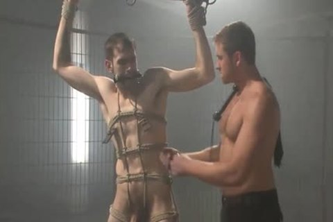 bdsm - Tormented And nailed.