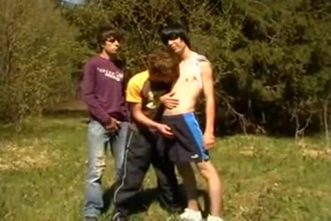 Outdoor trio young gay legal age teenagers enjoyment